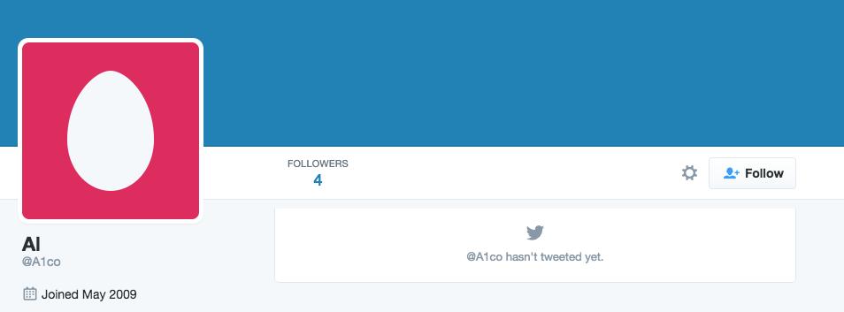 brand new Twitter account