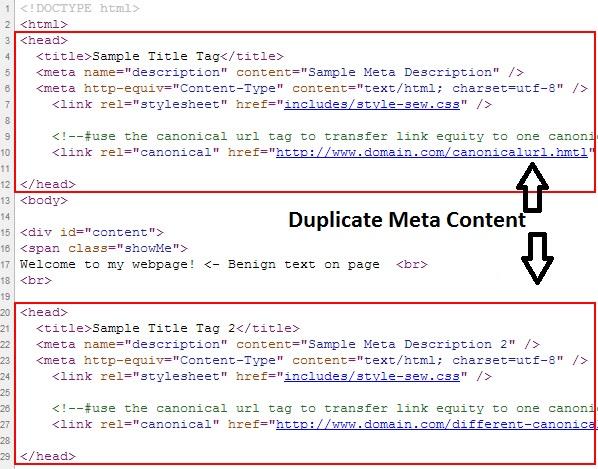 duplicate meta content