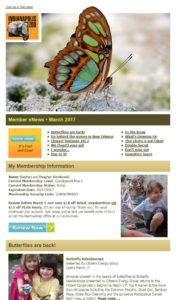 indy zoo personalized email example