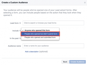 Custom Audience Lead Form Example