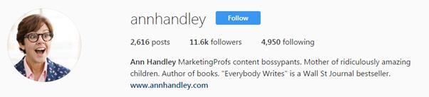 ann handley bio