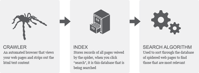 google crawl index search