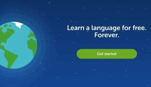 grab-attention-website-home-page-introduction-4-duolingo