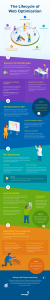 The Lifecycle of Website Optimization Infographic