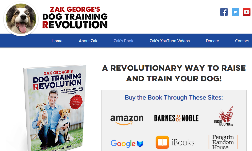 landing-page-design-dog-training