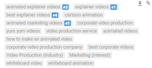 search-rankings-video-tags