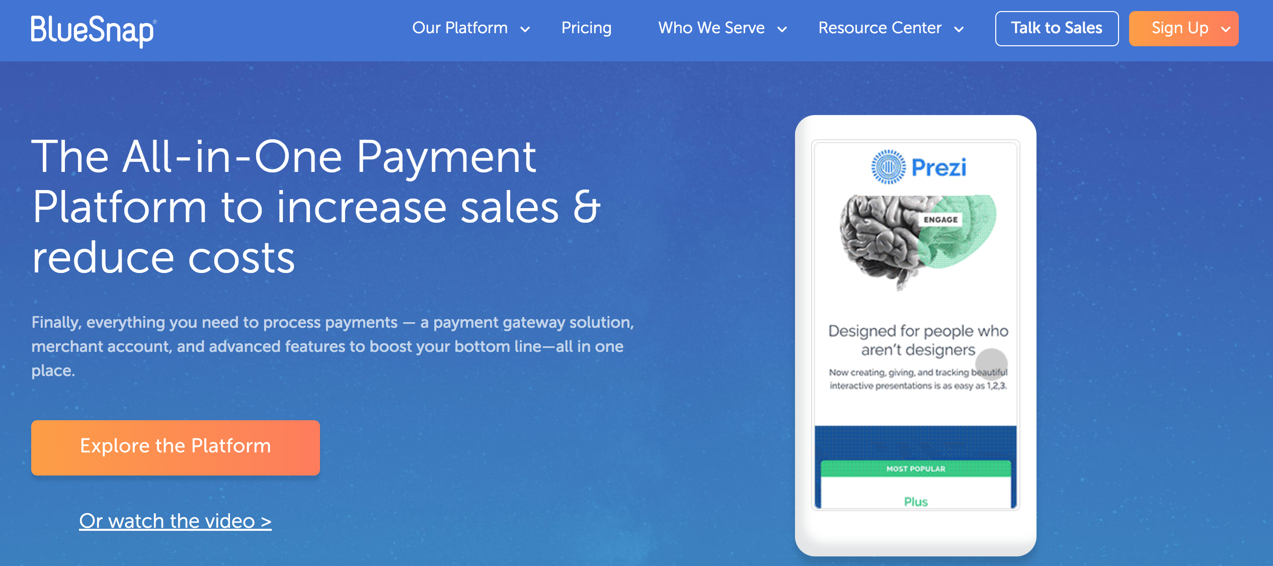 bluesnap financial services website