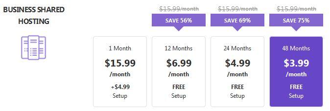 Hostinger Business Pricing