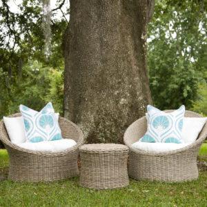 Outdoor Pillows & Rugs