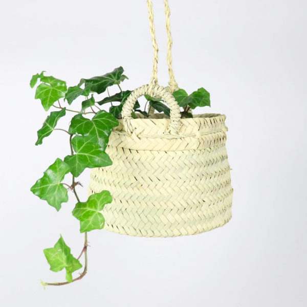 yosemite plant hanger