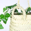 yosemite plant hanger 3