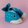 shark booties 2