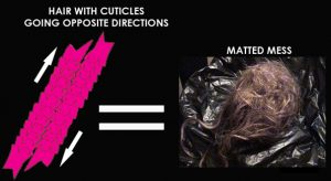 Cuticles In Different Directions