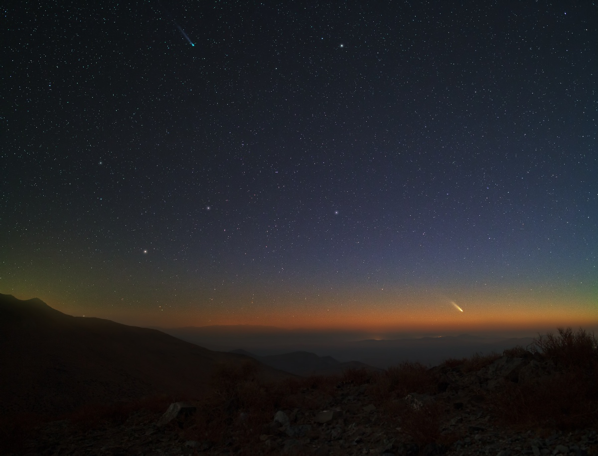 Comet Lemmon and PANSTARRS