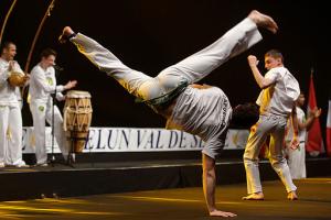 capoeira_show_master_de_fleuret_2013_t221422 1