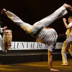 capoeira_show