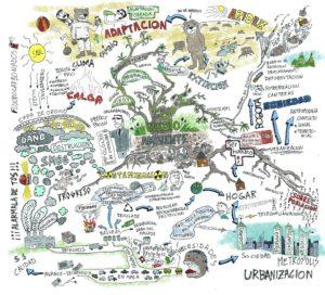 Cartografia Social
