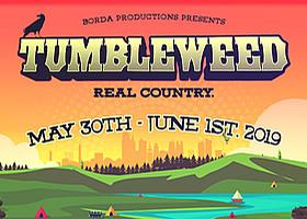 Angie Dawn's Not So Secret Diary: Tumbleweed Music Festival