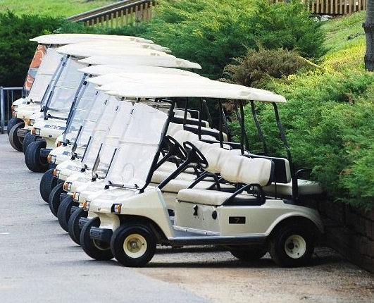 Mc1665 5 golf cart rentals