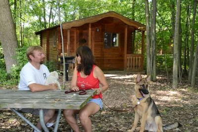 Cabin rentals in michigan
