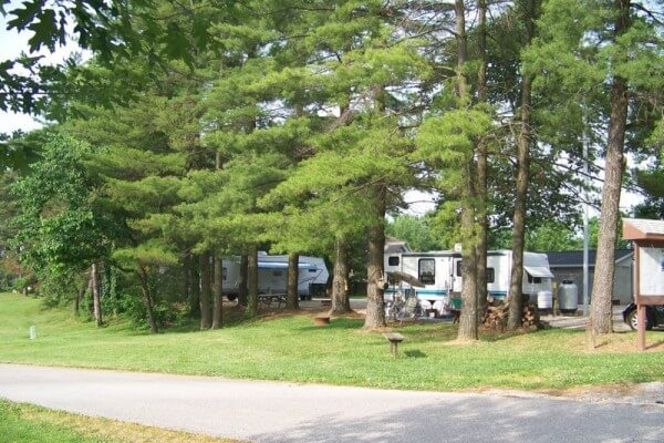 Tall pine trees surround the rv camping area a vanderburgh 4 h center in evansville indiana 600x400
