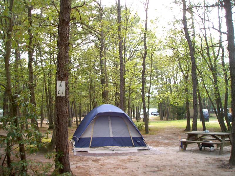 Mx0116 2 tent