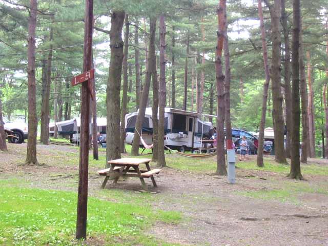 Knoebels Amut Resort & Campground | BookYourSite on