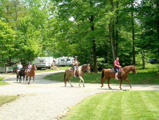 Mc1664 5 horsebackriding