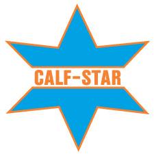 Calf Star