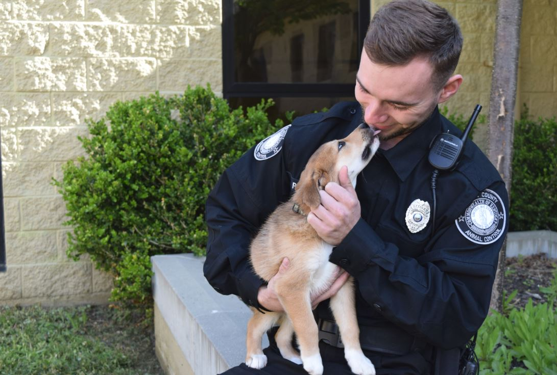 Now Hiring Animal Control Officer
