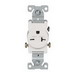 Cooper Wiring 1876W-BOX Arrow Hart™ Double Pole Straight Blade Single Receptacle; Screw Mount, 250 Volt AC, 20 Amp, White