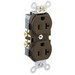 Leviton CR20 Double Pole Straight Blade Duplex Receptacle; Wall Mount, 125 Volt, 20 Amp, Brown