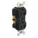 Leviton TBR20-E Tamper Resistant Double Pole Straight Blade Duplex Receptacle; 125 Volt, 20 Amp, Black