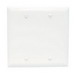 Pass & Seymour TP23-W tradeMaster® 2-Gang Standard-Size Mounted Blank Wallplate; Box Mount, Thermoplastic, White