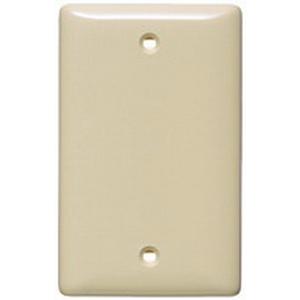 Hubbell Wiring NP13I 1-Gang Standard-Size Blank Wallplate; Box Mount, Nylon, Ivory