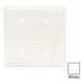 Hubbell Wiring NP24W 2-Gang Standard-Size Blank Wallplate; Strap Mount, Nylon, White