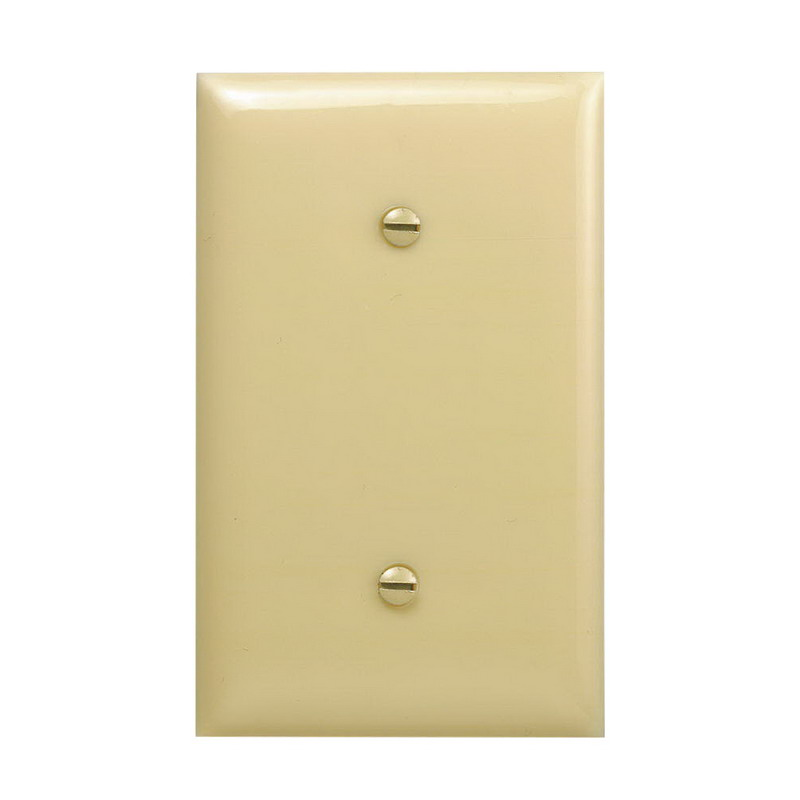 Hubbell Wiring NP14I 1-Gang Standard-Size Blank Wallplate; Strap Mount, Nylon, Ivory