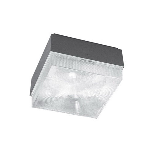 Hubbell Lighting NRG-401 1-Light High Pressure Sodium Ceiling Light Fixture; 1.8 Amp, 120 Volt, 50 Watt, Polycarbonate