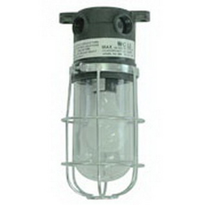 McGill 601 Utility Light; 150 Watt, A21 Incandescent Lamp