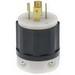 Leviton 2511 Black & White® Polarized Grounding Locking Plug; 20 Amp, 120/208 Volt, 4-Pole, 5-Wire, NEMA L21-20P, Black/White