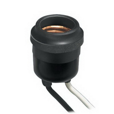 Leviton 55 Incandescent Lampholder; 250 Volt, 660 Watt, Medium Base, Twist-lock Mount, Black/White