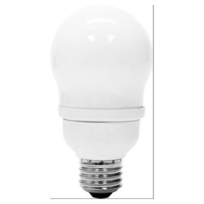 GE Lamps FLE15/2/A19XL Self-Ballasted A19 Compact Fluorescent Lamp; 15 Watt, 120 Volt, 2700K, Medium Screw (E26) Base, 10000 Hour Life, Soft White
