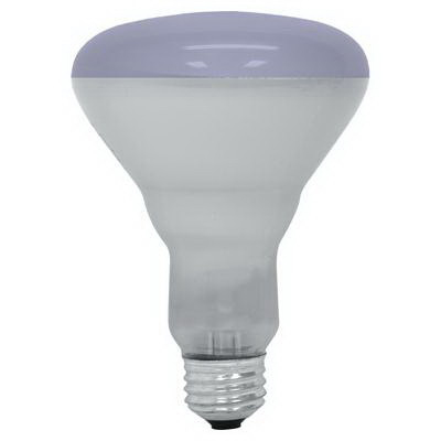 GE Lamps 65R30/PL-1-120 Quartzline® BR30 Incandescent Reflector Lamp; 65 Watt, 120 Volt, Medium Screw (E26) Base, 2000 Hour Life