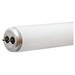 GE Lamps F40/GB/ECO/2P Straight T12 Linear Fluorescent Lamp; 40 Watt, 4100K, Medium Bi-Pin (G13) Base, 20000 Hour Life