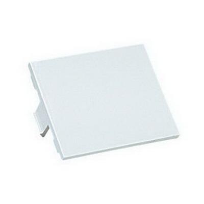 Panduit CHB2IW-X Mini-Com® 1/2-Size Blank Insert; Plastic, Off White