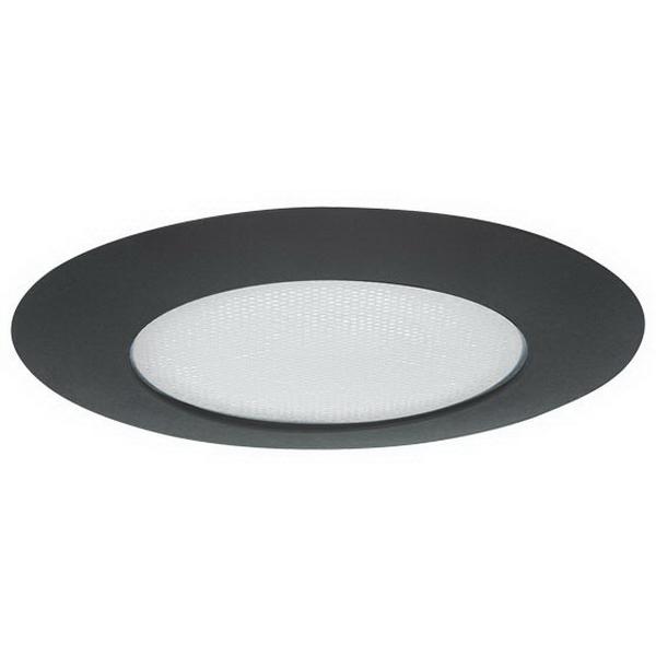 Elite Lighting AF601BK Shower Trim; 40 Watt Incandescent