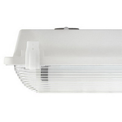 EPCO G4L2-T8-CL GFF Series™ 2-Light Ceiling/Wall Fluorescent Strip Fixture; Epoxy, Lamp Not Included