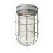 Perfect-Line TBGG-100 Vapor Tight Light Fixture With Guard Globe and Bracket; 100 Watt, Natural Cast