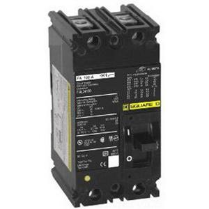 Schneider Electric / Square D FHL26000M Molded Case Switch; 100 Amp, 600 Volt AC/250 Volt DC, 2-Pole