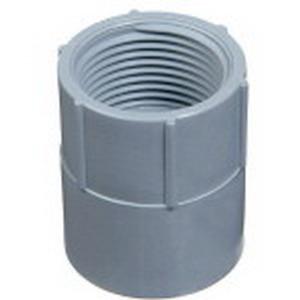 Carlon E942G SCH 40 Non-Metallic Terminal Adapter; 1-1/4 Inch, FNPT x Socket End, PVC